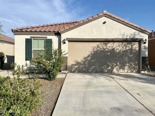 1069 W Canyonlands Court, San Tan Valley, AZ 85140 (MLS #6267679) :: Scott Gaertner Group