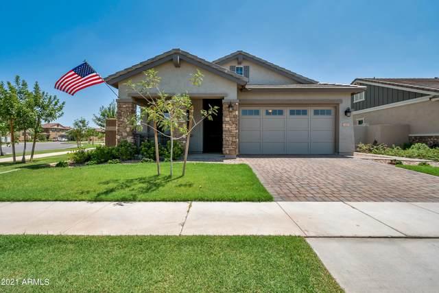 3443 E Pinto Drive, Gilbert, AZ 85296 (MLS #6267697) :: Yost Realty Group at RE/MAX Casa Grande