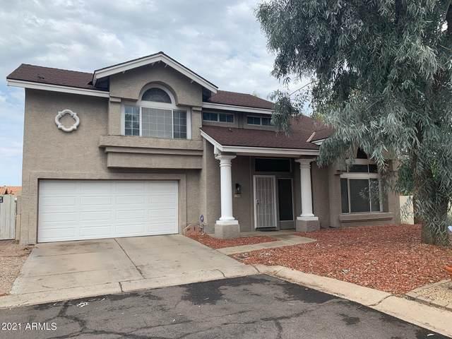 906 E Annette Drive, Phoenix, AZ 85022 (MLS #6267745) :: Yost Realty Group at RE/MAX Casa Grande