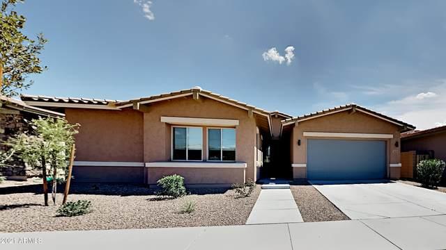 22729 E Tierra Grande, Queen Creek, AZ 85142 (MLS #6267750) :: Elite Home Advisors
