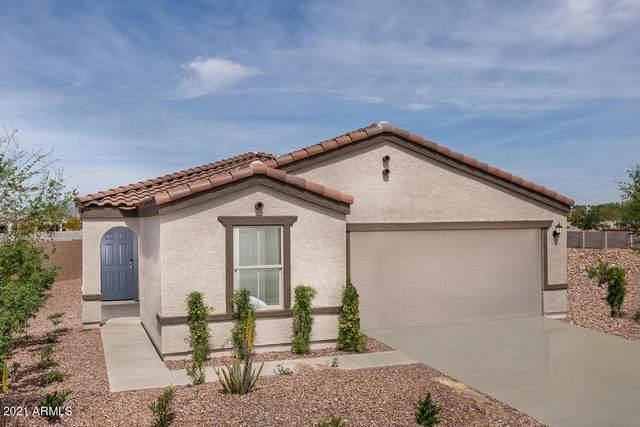 25606 W Gwen Street, Buckeye, AZ 85326 (MLS #6267769) :: Yost Realty Group at RE/MAX Casa Grande