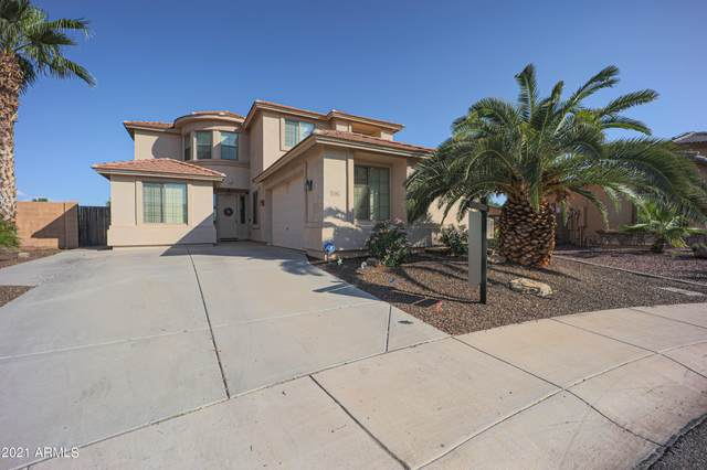 25677 W Globe Avenue, Buckeye, AZ 85326 (MLS #6267772) :: Kepple Real Estate Group
