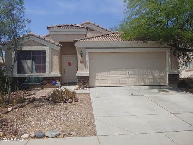 23332 W Ashleigh Marie Drive, Buckeye, AZ 85326 (MLS #6267773) :: Yost Realty Group at RE/MAX Casa Grande