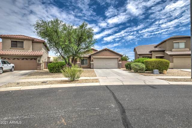 11362 W Buchanan Street, Avondale, AZ 85323 (MLS #6267784) :: Yost Realty Group at RE/MAX Casa Grande