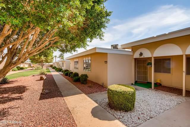 11079 W Coggins Drive, Sun City, AZ 85351 (MLS #6267794) :: Service First Realty