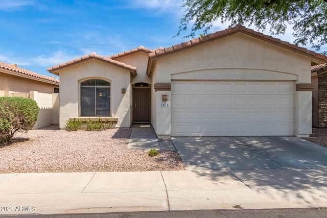 1078 E Susan Lane, Tempe, AZ 85281 (MLS #6267799) :: Jonny West Real Estate