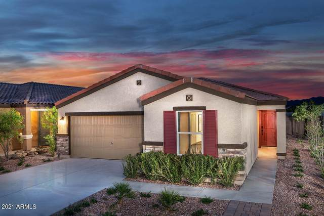 25614 W Gwen Street, Buckeye, AZ 85326 (MLS #6267803) :: Yost Realty Group at RE/MAX Casa Grande
