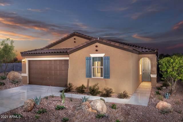 25624 W Gwen Street, Buckeye, AZ 85326 (MLS #6267816) :: Yost Realty Group at RE/MAX Casa Grande