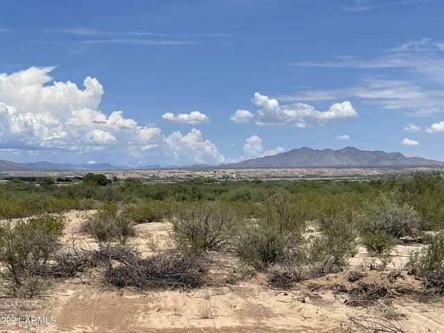 1111 N Williams Lane, Saint David, AZ 85630 (MLS #6267832) :: Yost Realty Group at RE/MAX Casa Grande