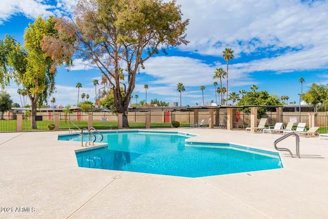 1975 E Del Sur Drive, Tempe, AZ 85283 (MLS #6267913) :: Yost Realty Group at RE/MAX Casa Grande