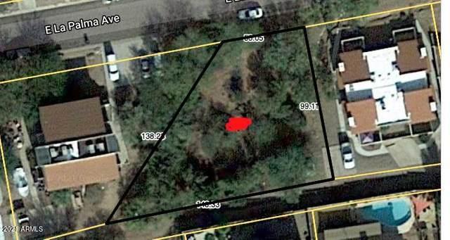 9945 E La Palma Avenue, Gold Canyon, AZ 85118 (MLS #6267939) :: Yost Realty Group at RE/MAX Casa Grande