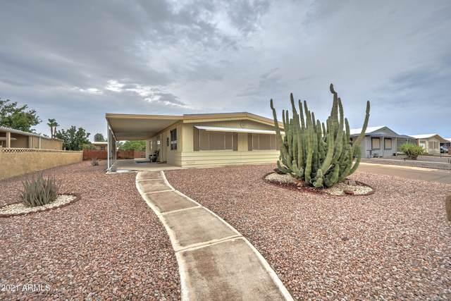 26630 S Papago Place, Sun Lakes, AZ 85248 (MLS #6267946) :: Dave Fernandez Team | HomeSmart