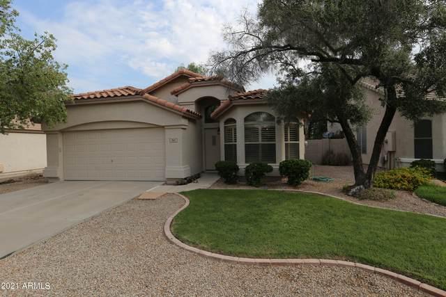 742 E Devon Drive, Gilbert, AZ 85296 (MLS #6268027) :: Yost Realty Group at RE/MAX Casa Grande