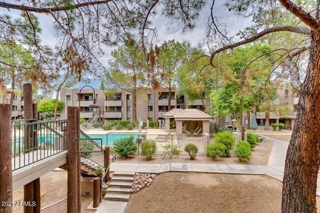 7777 E Main Street #253, Scottsdale, AZ 85251 (MLS #6268032) :: Yost Realty Group at RE/MAX Casa Grande
