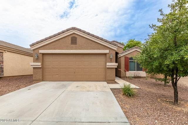 10833 W Taft Street, Phoenix, AZ 85037 (MLS #6268055) :: Executive Realty Advisors