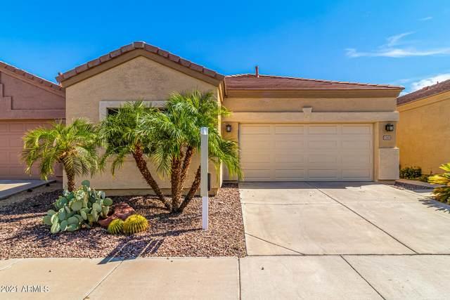 3303 E Fremont Road, Phoenix, AZ 85042 (MLS #6268085) :: Yost Realty Group at RE/MAX Casa Grande