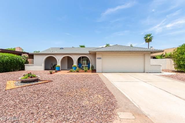 8616 E San Alfredo Drive, Scottsdale, AZ 85258 (MLS #6268146) :: Conway Real Estate