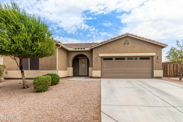 6227 N 75TH Drive, Glendale, AZ 85303 (MLS #6268161) :: Howe Realty