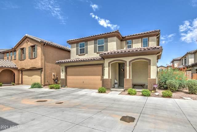 2884 E Binner Drive, Chandler, AZ 85225 (MLS #6268178) :: Yost Realty Group at RE/MAX Casa Grande
