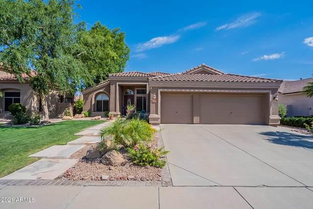 6784 W Sonnet Drive, Glendale, AZ 85308 (MLS #6268183) :: Yost Realty Group at RE/MAX Casa Grande