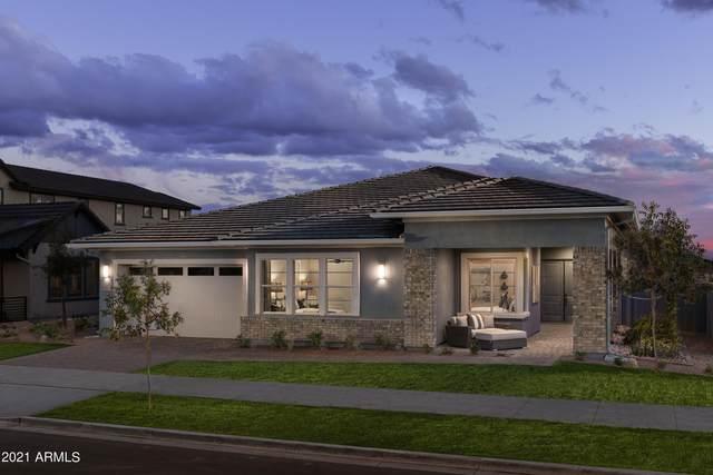 3621 E Bloomfield Parkway, Gilbert, AZ 85296 (MLS #6268209) :: Yost Realty Group at RE/MAX Casa Grande