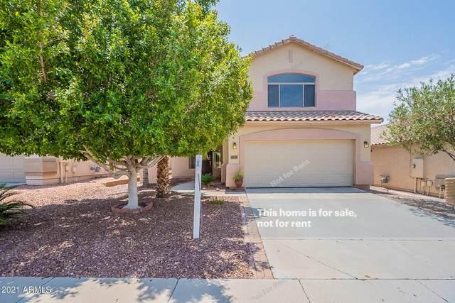 6349 W Desert Hollow Drive, Phoenix, AZ 85083 (MLS #6268214) :: Elite Home Advisors