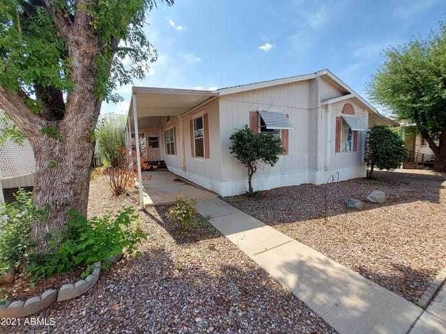 552 S Deer Creek Lane, Sierra Vista, AZ 85635 (MLS #6268251) :: Arizona 1 Real Estate Team