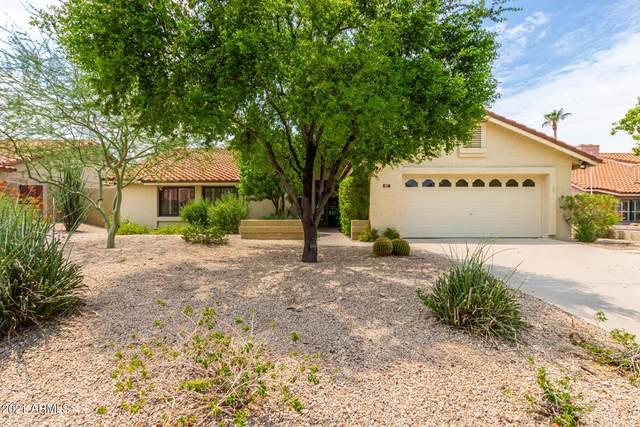 817 E Meadow Lane, Phoenix, AZ 85022 (MLS #6268277) :: Yost Realty Group at RE/MAX Casa Grande