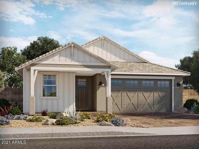 22538 E Quintero Road, Queen Creek, AZ 85142 (MLS #6268292) :: Yost Realty Group at RE/MAX Casa Grande