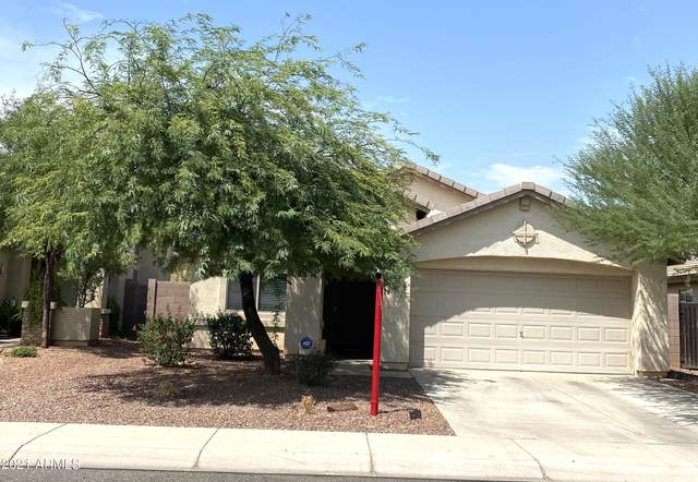 10994 W Rio Vista Lane, Avondale, AZ 85323 (MLS #6268322) :: Yost Realty Group at RE/MAX Casa Grande