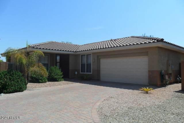2233 N 135TH Drive, Goodyear, AZ 85395 (MLS #6268336) :: The Daniel Montez Real Estate Group