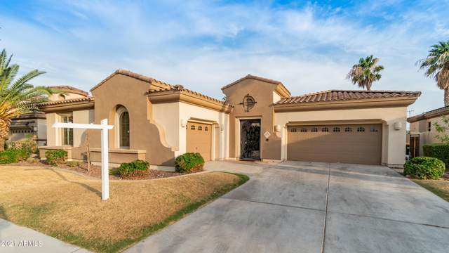 775 W Azure Lane, Litchfield Park, AZ 85340 (MLS #6268363) :: The Bole Group | eXp Realty