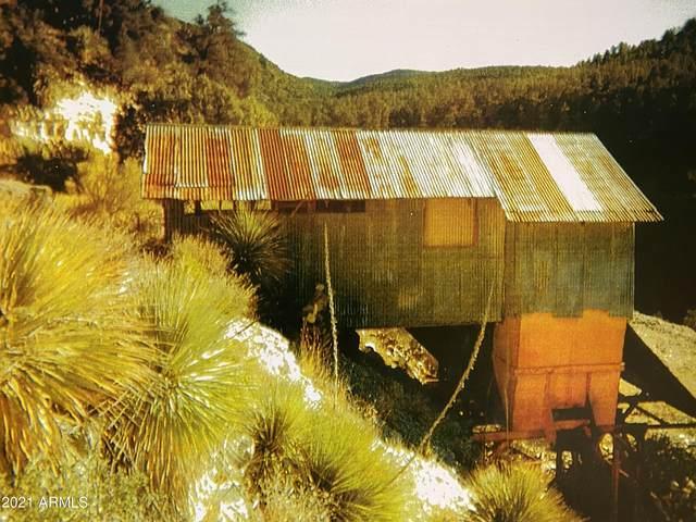0 N Forest Road 473, Globe, AZ 85501 (MLS #6268370) :: Devor Real Estate Associates