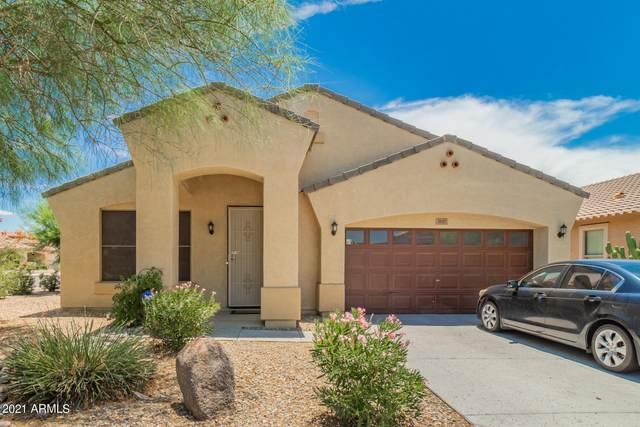 3117 W Saint Anne Avenue, Phoenix, AZ 85041 (MLS #6268382) :: Yost Realty Group at RE/MAX Casa Grande