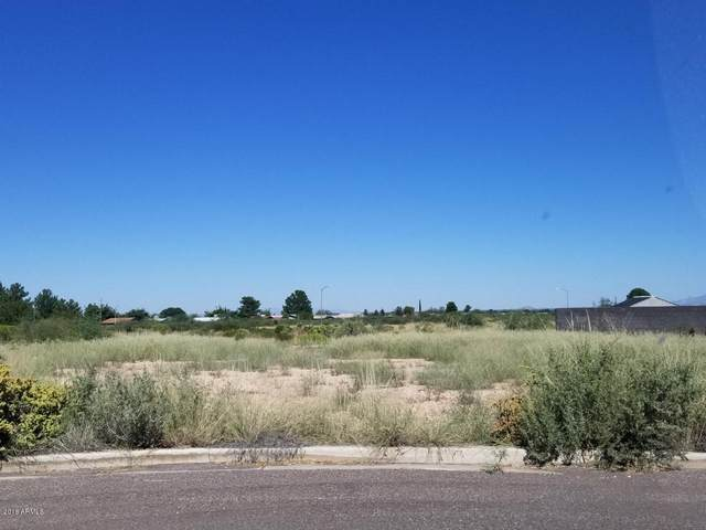 2906 E Acacia Court, Douglas, AZ 85607 (MLS #6268429) :: Openshaw Real Estate Group in partnership with The Jesse Herfel Real Estate Group