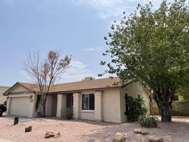1407 W Impala Avenue, Mesa, AZ 85202 (MLS #6268433) :: Yost Realty Group at RE/MAX Casa Grande