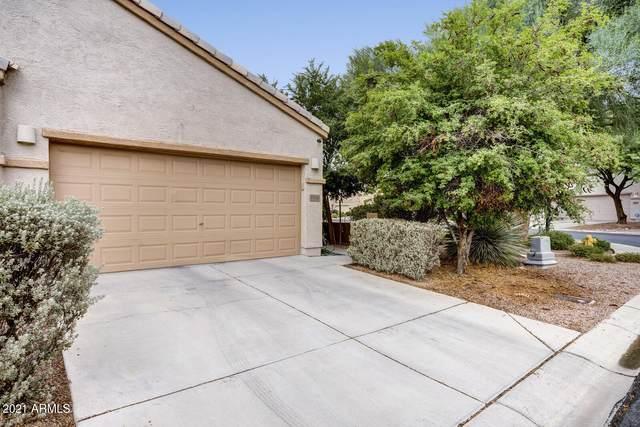 7010 W Mcmahon Way, Peoria, AZ 85345 (MLS #6268435) :: Klaus Team Real Estate Solutions