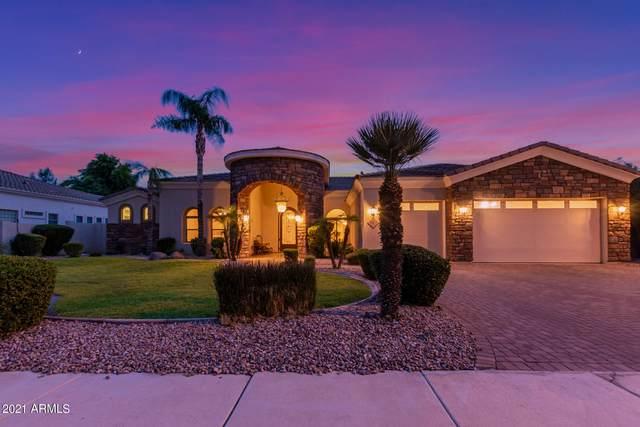 913 E Coconino Place, Chandler, AZ 85249 (MLS #6268494) :: Yost Realty Group at RE/MAX Casa Grande