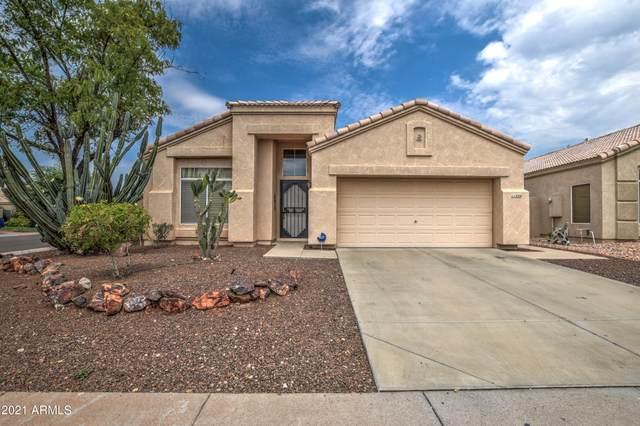 11234 W Amelia Avenue, Avondale, AZ 85392 (MLS #6268511) :: Yost Realty Group at RE/MAX Casa Grande