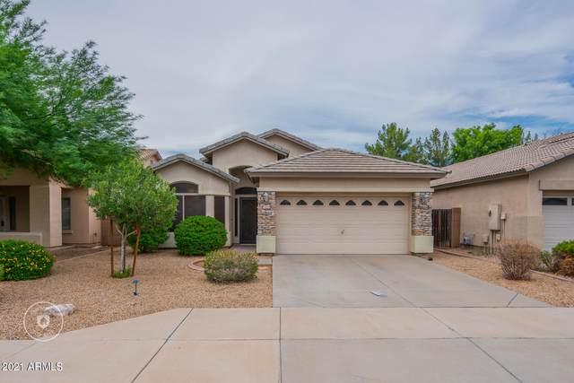 12614 W Redondo Drive, Litchfield Park, AZ 85340 (MLS #6268526) :: The Bole Group | eXp Realty