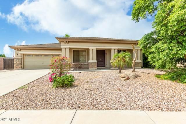 465 E Frances Lane, Gilbert, AZ 85295 (MLS #6268544) :: Conway Real Estate