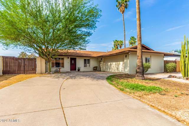 3719 W Gelding Drive, Phoenix, AZ 85053 (MLS #6268554) :: The Carin Nguyen Team