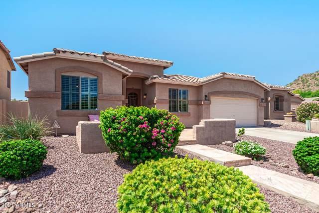 6531 W Gambit Trail, Phoenix, AZ 85083 (MLS #6268581) :: The Property Partners at eXp Realty