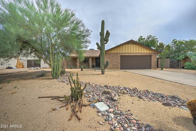 3519 W Grovers Avenue, Glendale, AZ 85308 (MLS #6268586) :: Yost Realty Group at RE/MAX Casa Grande