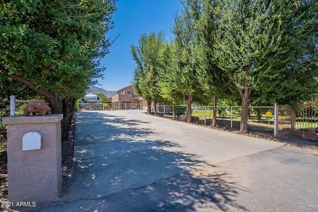 17509 E Chestnut Drive, Queen Creek, AZ 85142 (MLS #6268605) :: Power Realty Group Model Home Center