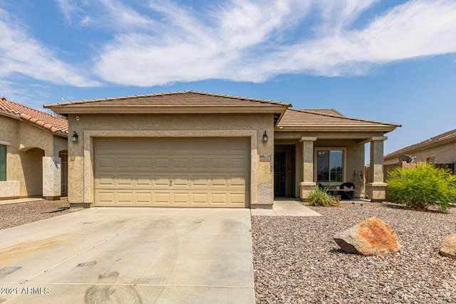 41103 N Stenson Drive, San Tan Valley, AZ 85140 (MLS #6268619) :: Long Realty West Valley