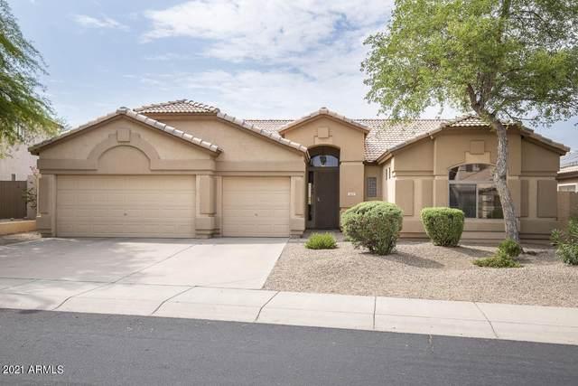 4611 E Morning Vista Lane, Cave Creek, AZ 85331 (MLS #6268630) :: TIBBS Realty