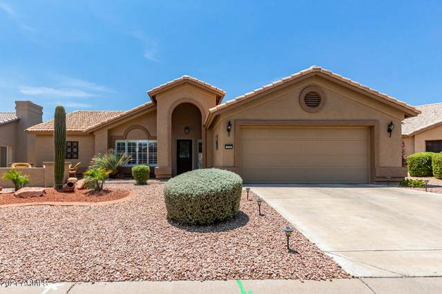 3528 N Casper Drive, Goodyear, AZ 85395 (MLS #6268631) :: The Daniel Montez Real Estate Group