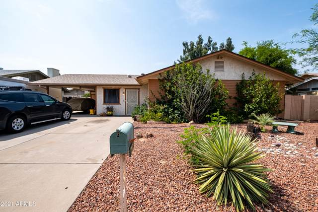 3221 W Sahuaro Drive, Phoenix, AZ 85029 (MLS #6268669) :: Executive Realty Advisors