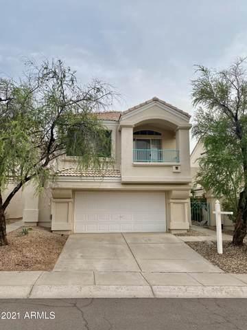 1143 E Amberwood Drive, Phoenix, AZ 85048 (MLS #6268676) :: My Home Group